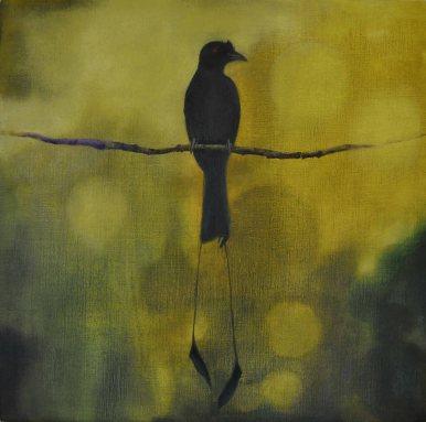 Bird Painting - Drongo 01