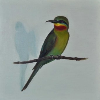 Blue Tailed Bee-Eater 01b