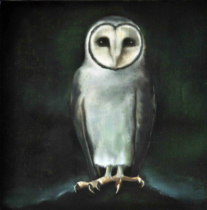 Masked Owl 01
