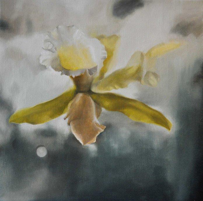 White Iris 01