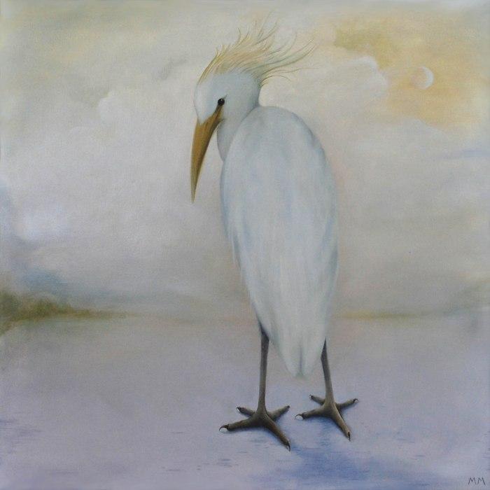 Cattle Heron14 02